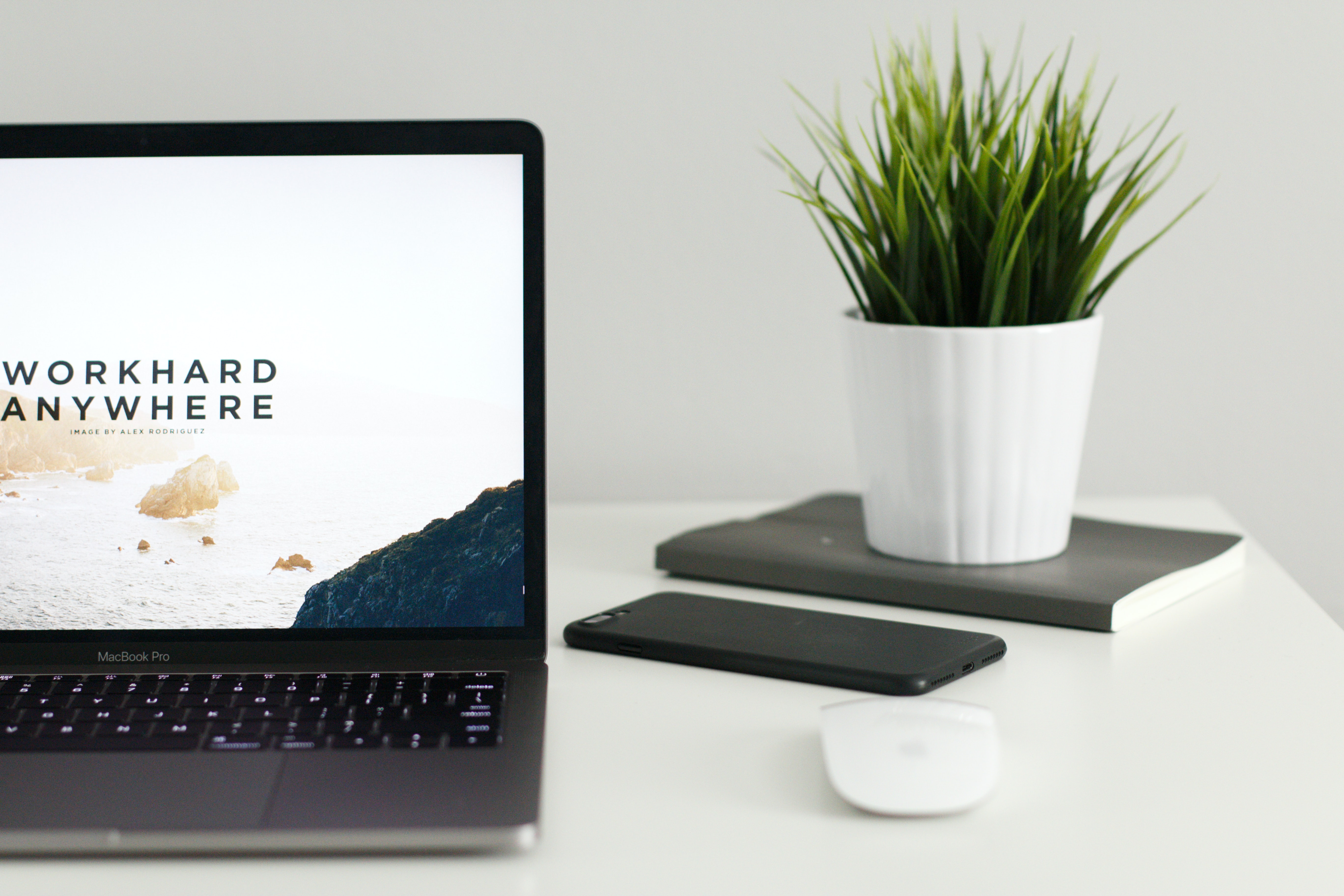 become freelance writer